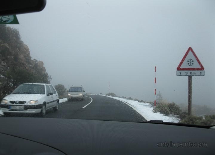 В местах, где по выше встречался и снег