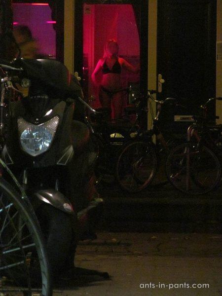 элитные проститутки в амстердаме
