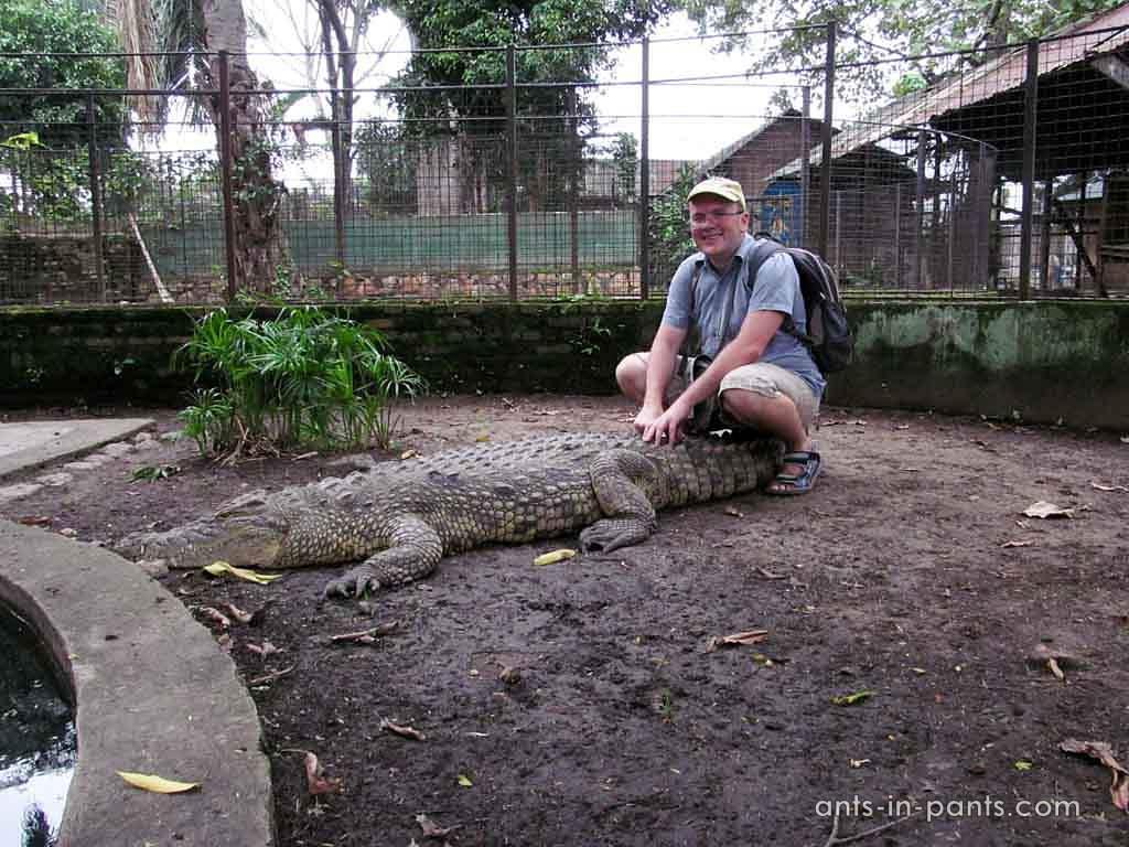 Кроколил