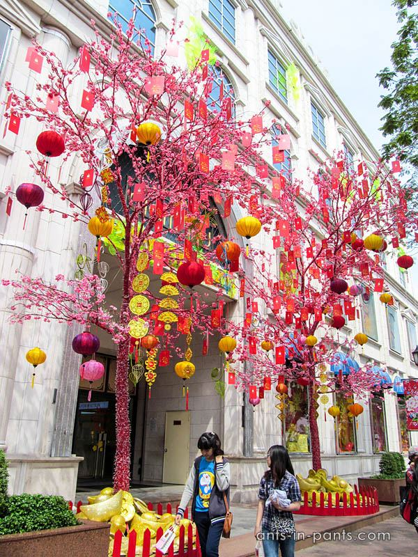 decorations of the city for the Chinese New Year