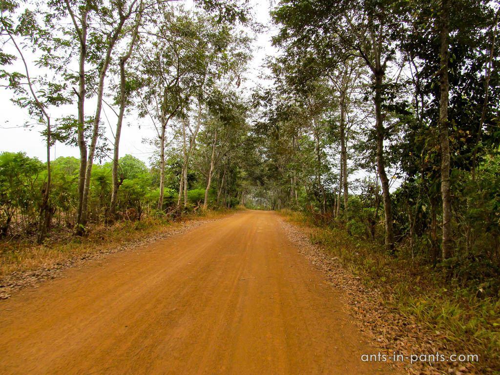Roads in Daklak