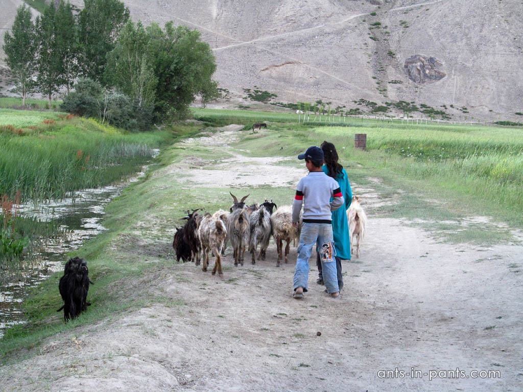 Wakhan-Valley-15IMG_5431