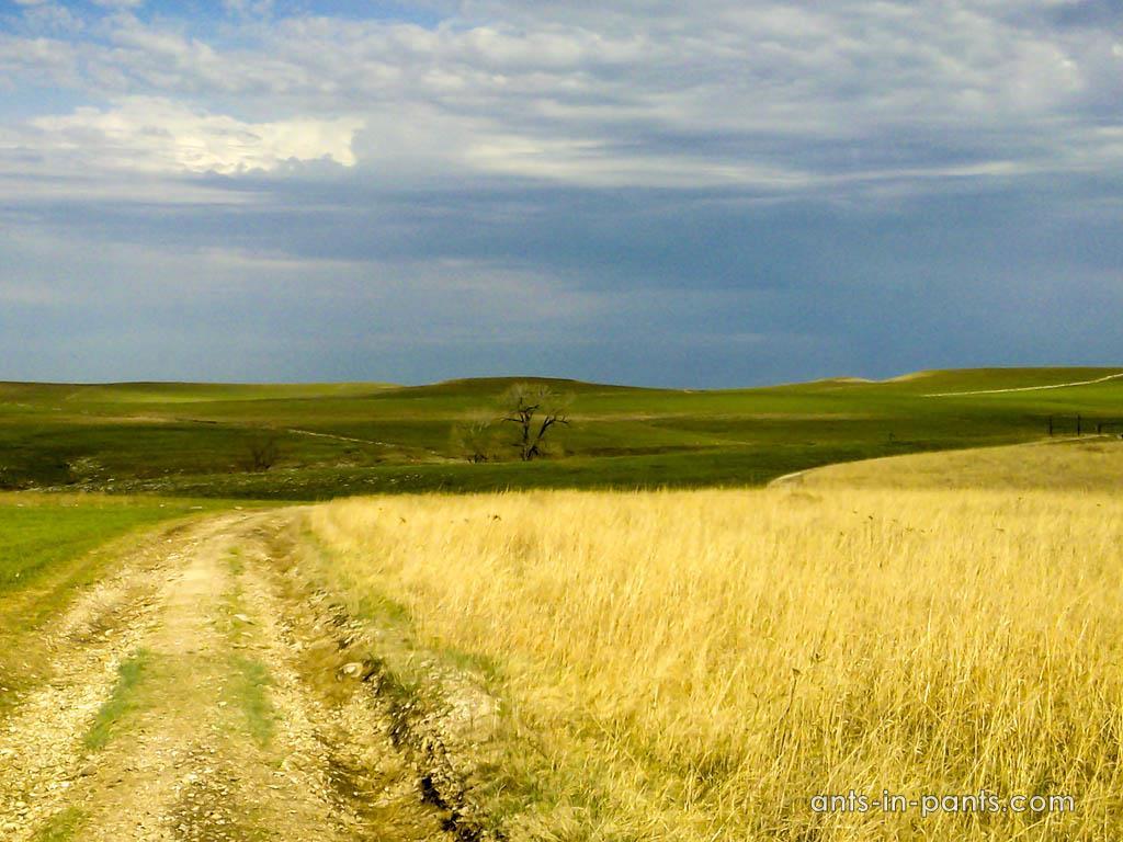 Пейзаж в прериях