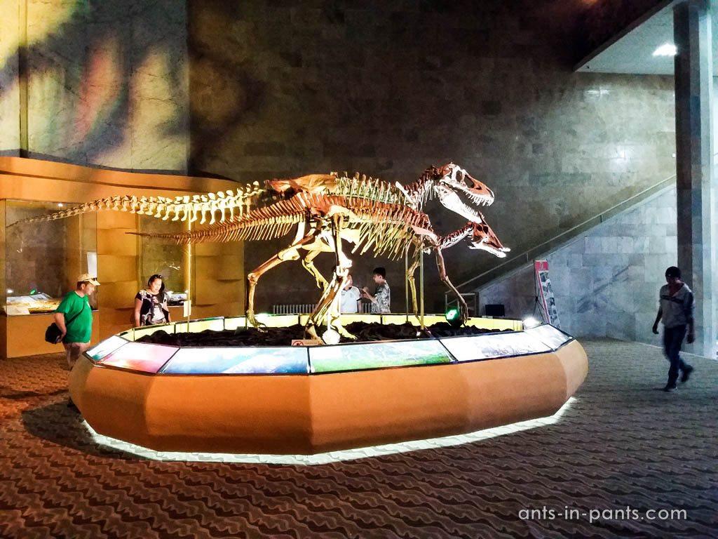 Музей динозавров в Улан Баторе
