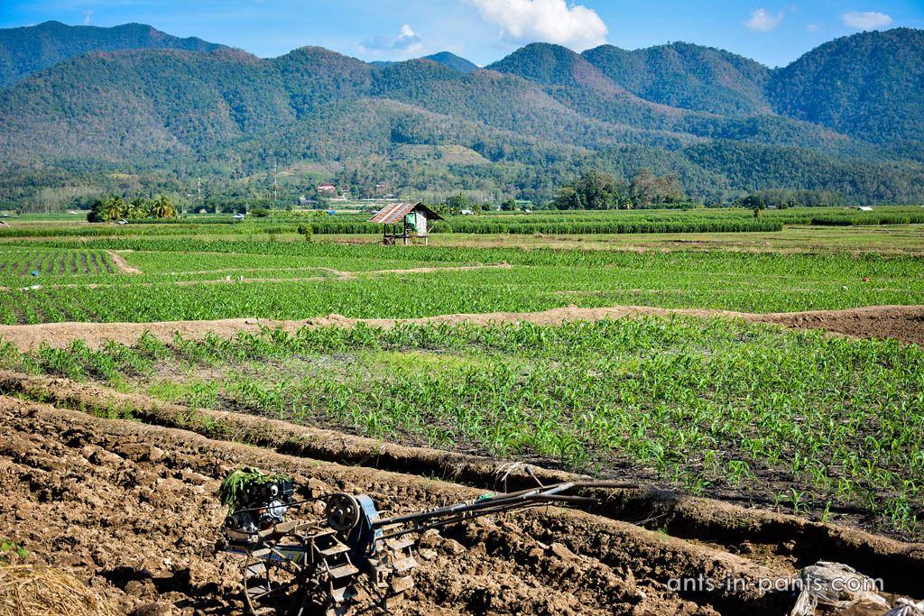Дороги на Севере Тайланда