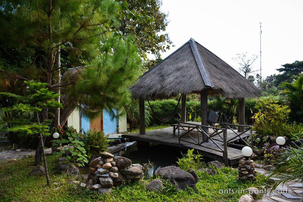 Piranha park