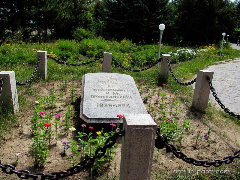 могила Пржевальского
