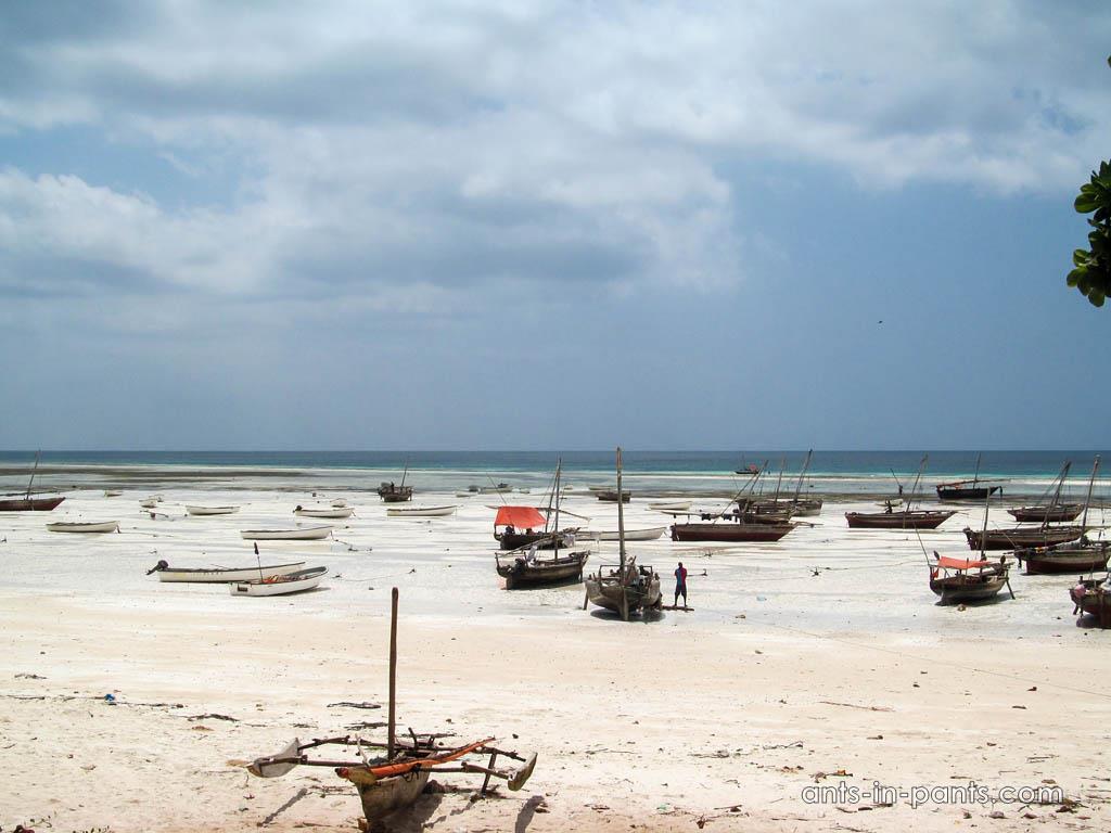 Tours in Zanzibar