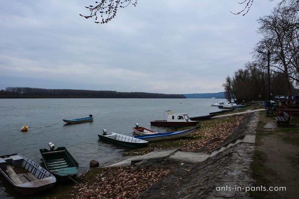 берег Дуная