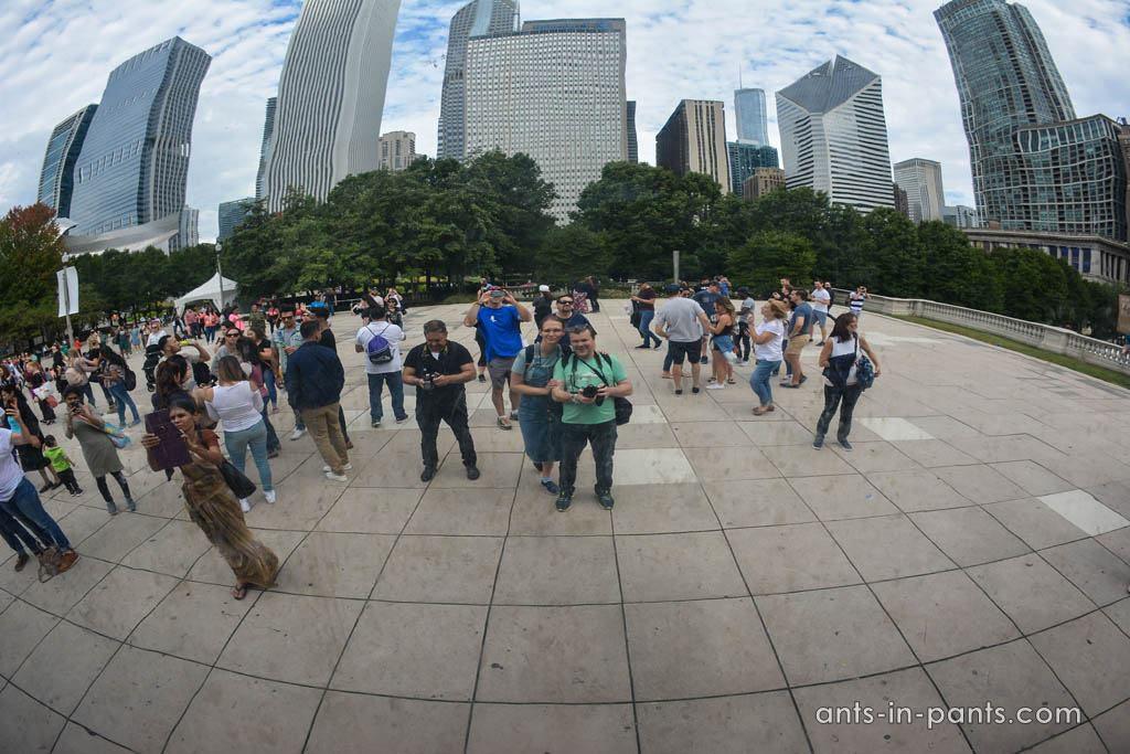фасолька Чикаго