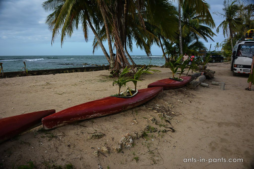 Bocas del Drago beach