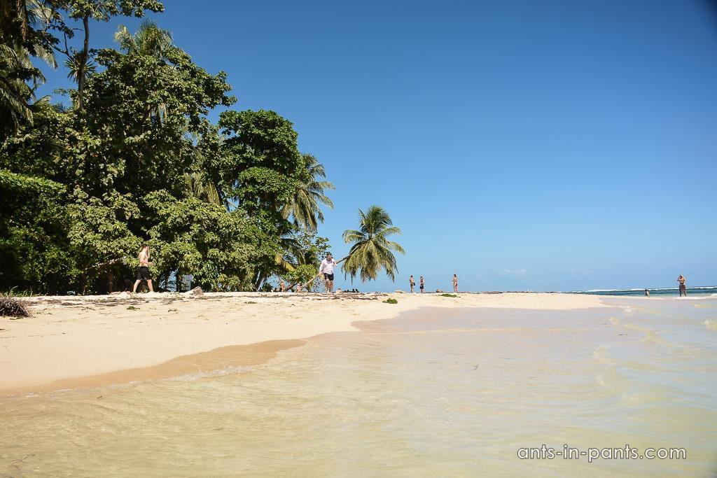 остров Запатилла