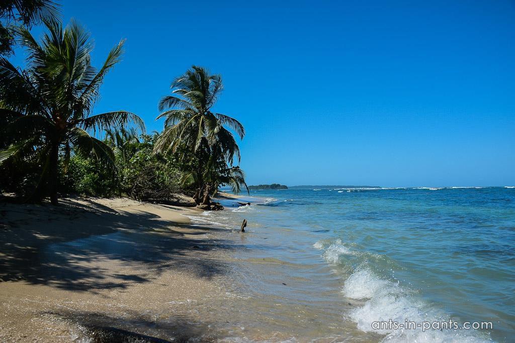 island of Zapatilla
