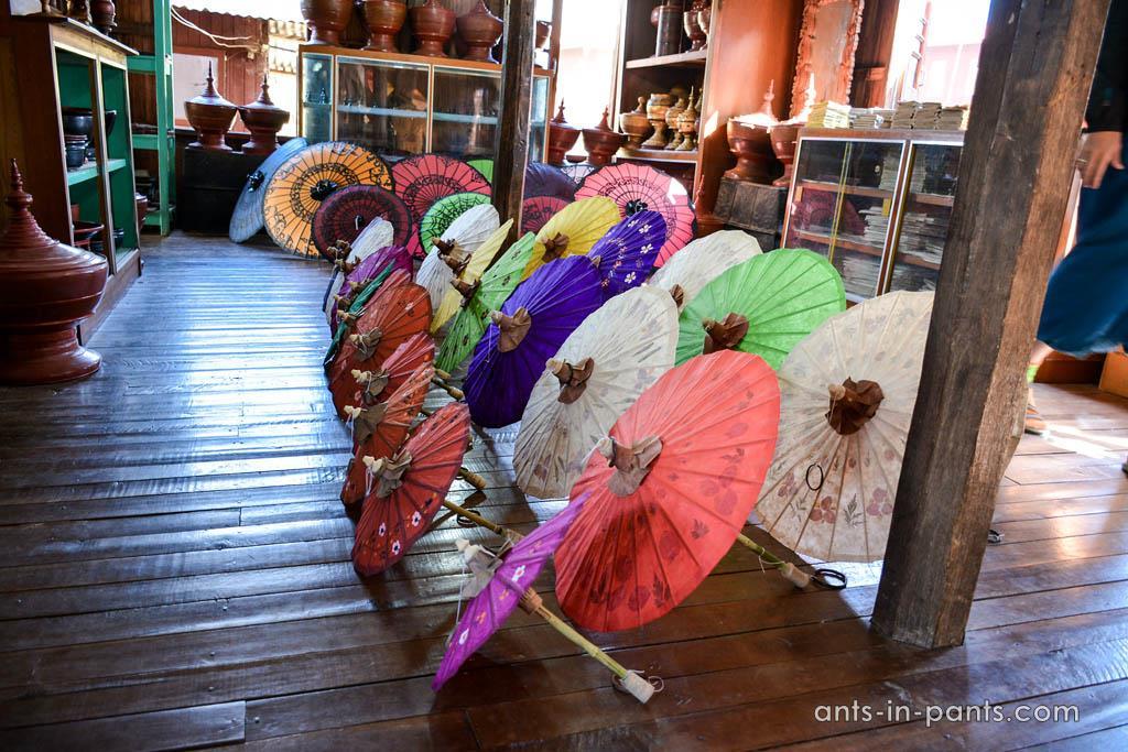 бирманские зонтики