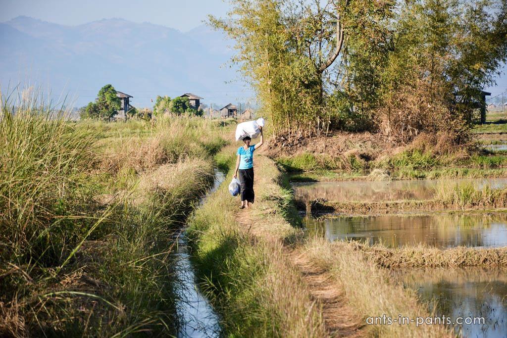 Burmese everyday life