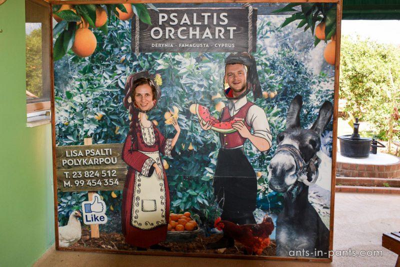 апельсиновый сад Псалтис