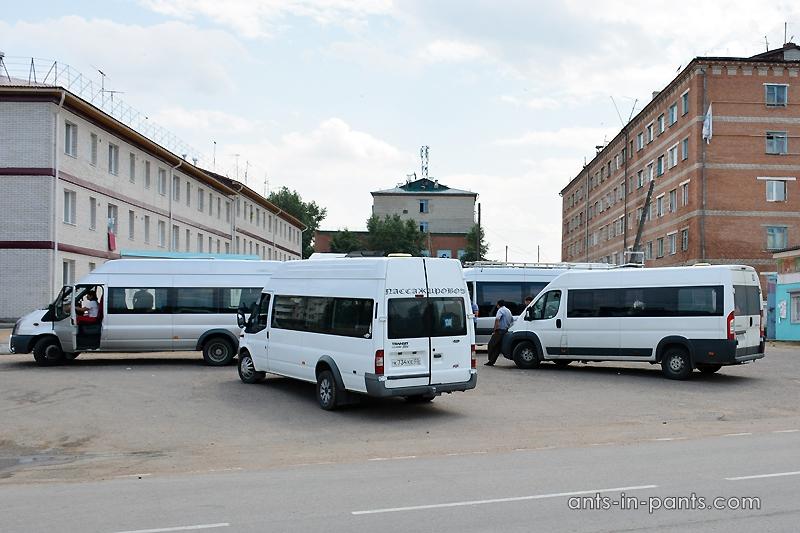 маршрутки в Монголию